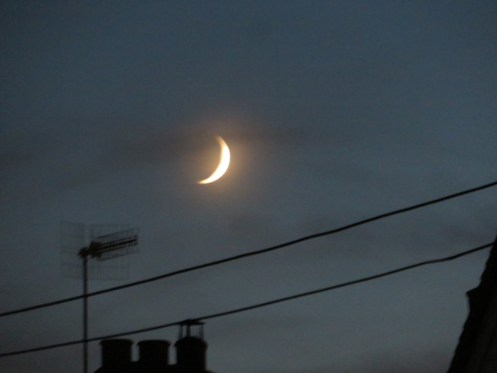 Crescent Moon by lellie