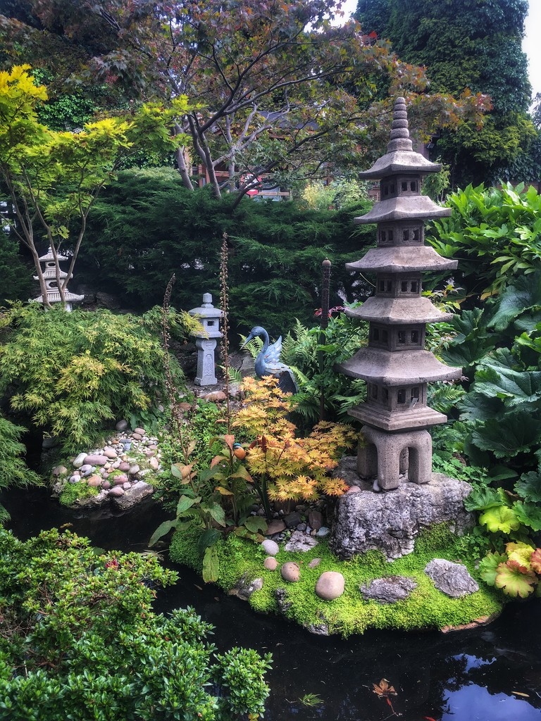 Japanese garden by pattyblue
