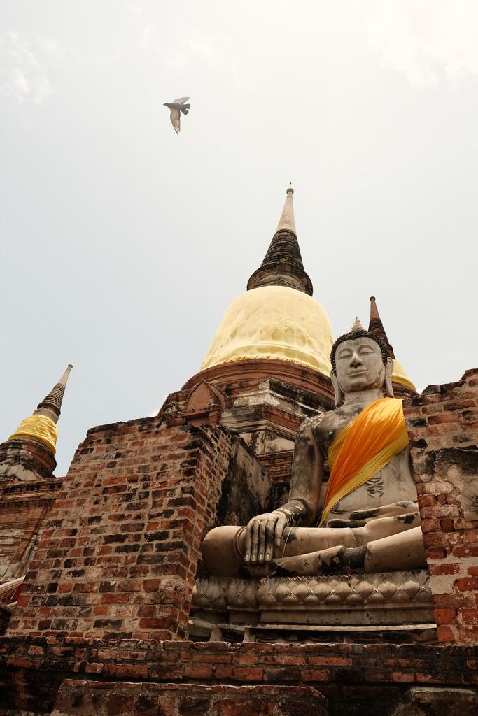 Stupa by stefanotrezzi