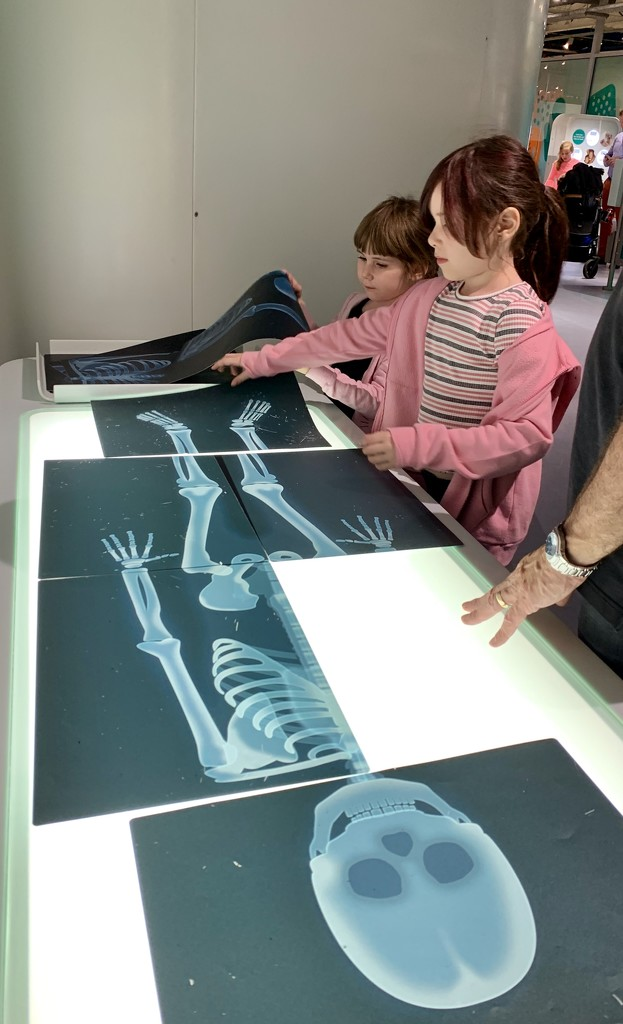 ....dem bones dem bones... by carole_sandford