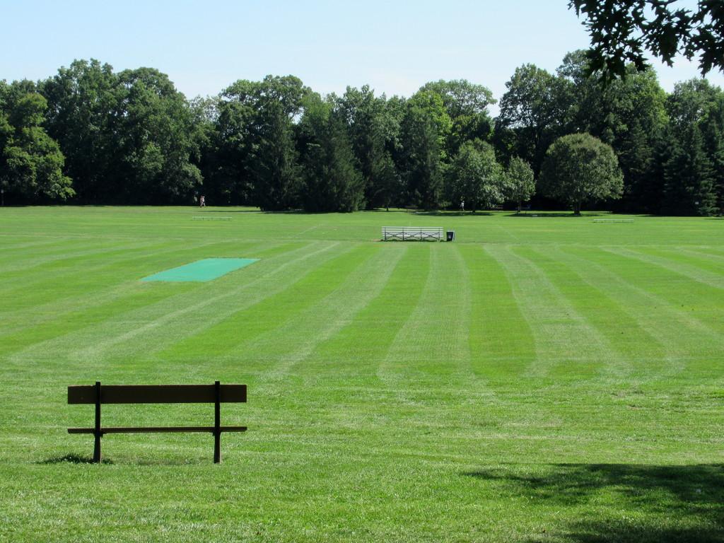 Soccerfield. by bruni
