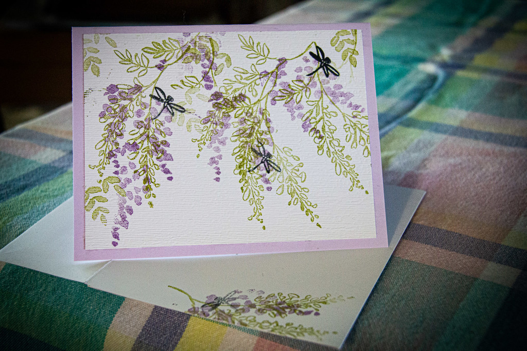 Dragonflies in the wisteria by randystreat