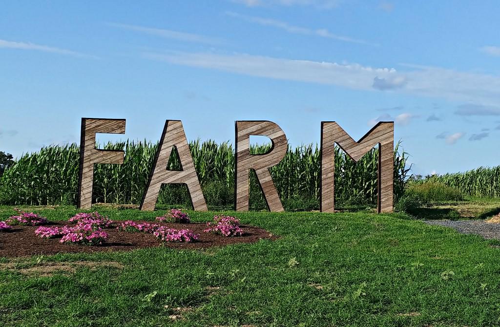 Farm  by jo38