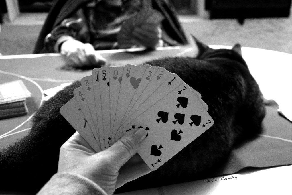playing cards by parisouailleurs