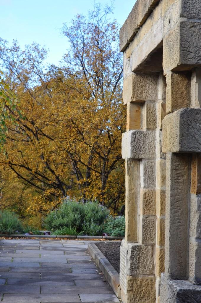 Autumn by kgolab