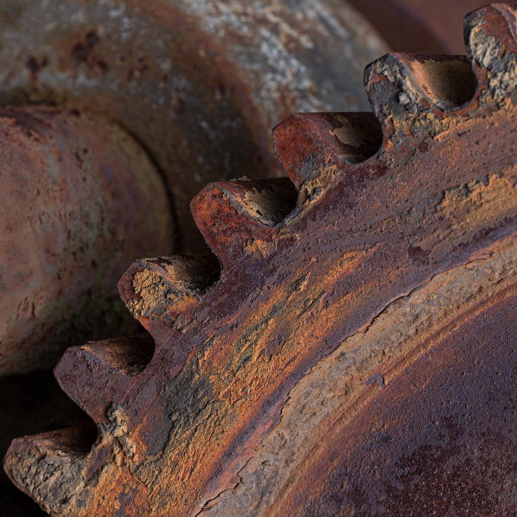 Rusty by dulciknit