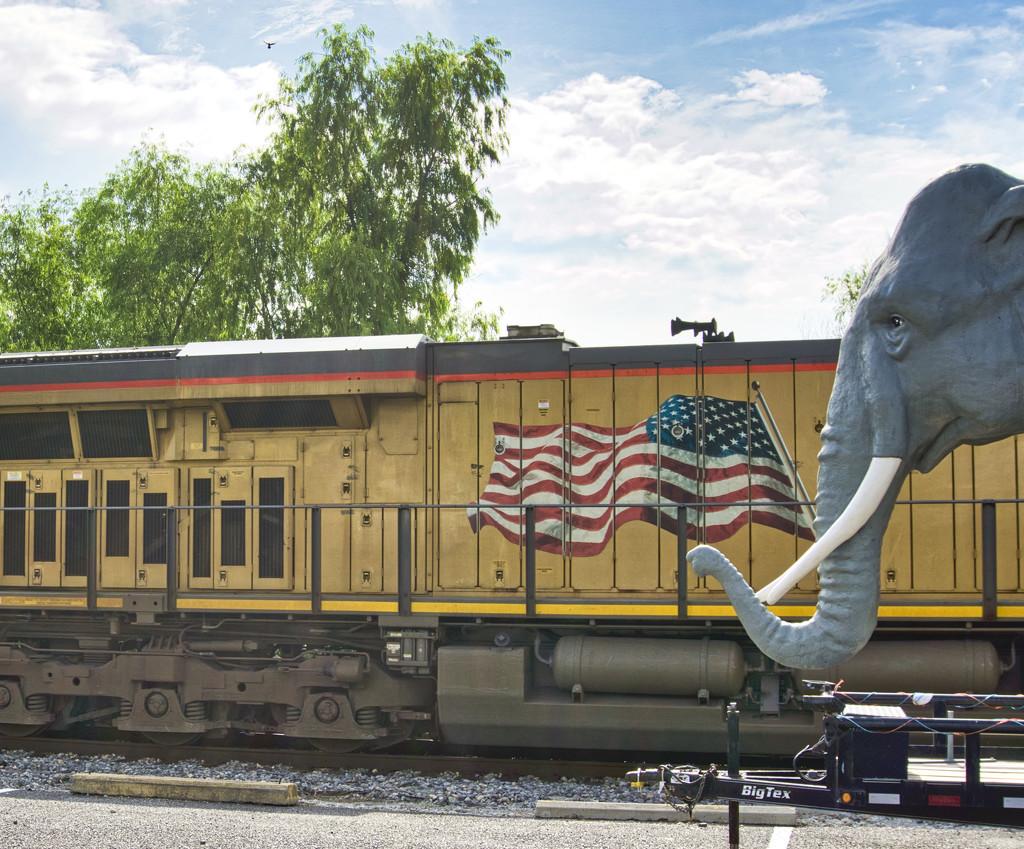 A circus train? by eudora