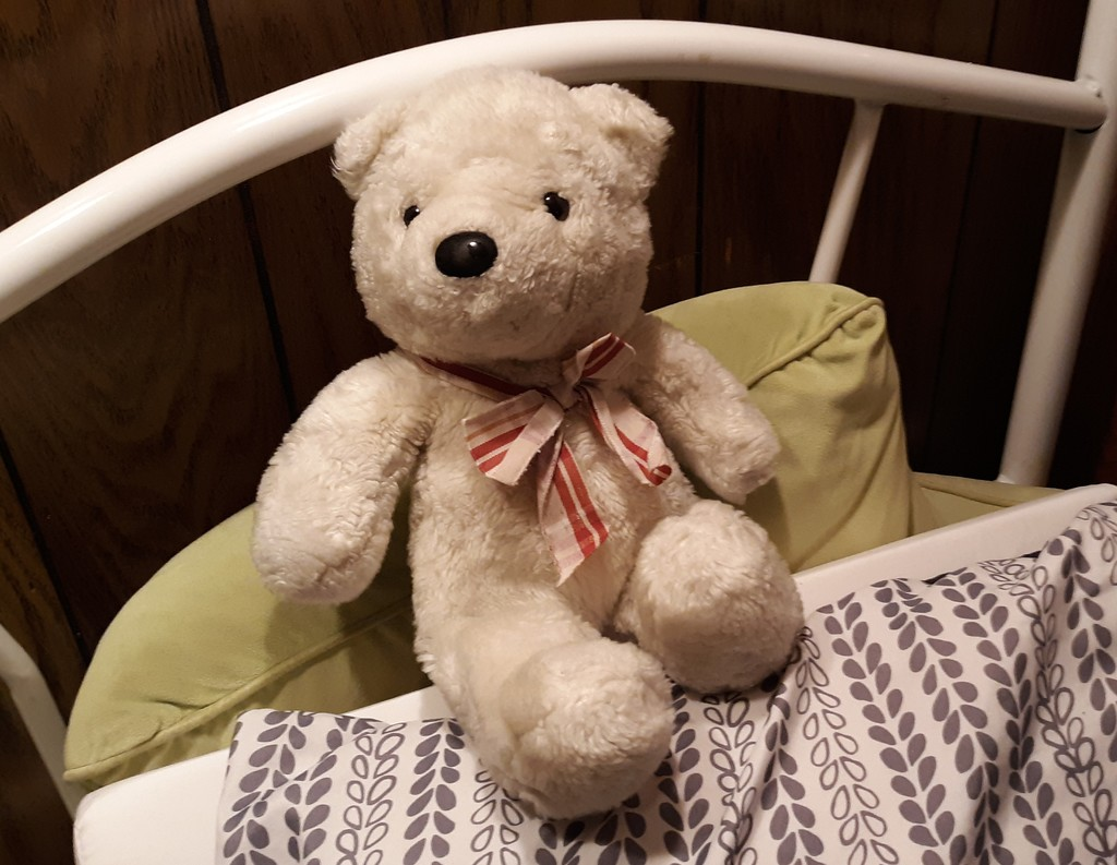 Teddy by julie