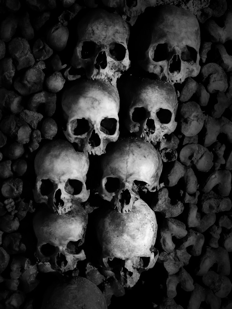bones by northy