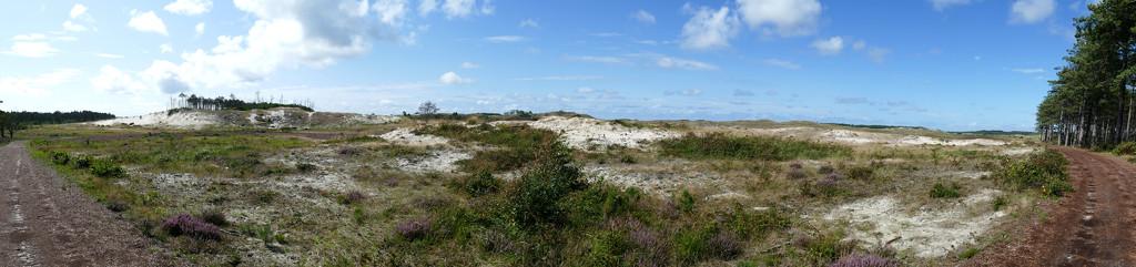 panorama dunes Schoorl, Holland by marijbar