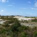 panorama dunes Schoorl, Holland