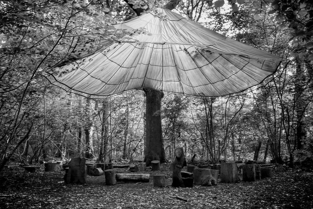 Giant mushroom by 4rky