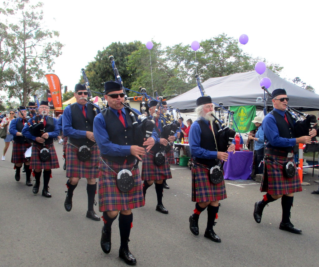 Local band marching through the Streets of Yandina to the opening of the Street Fair by 777margo