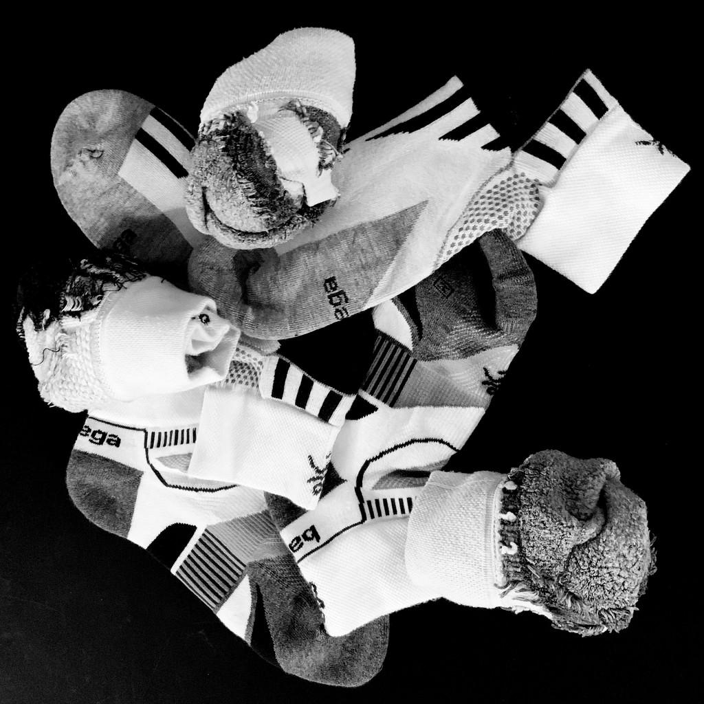 Black and White Socks by shutterbug49