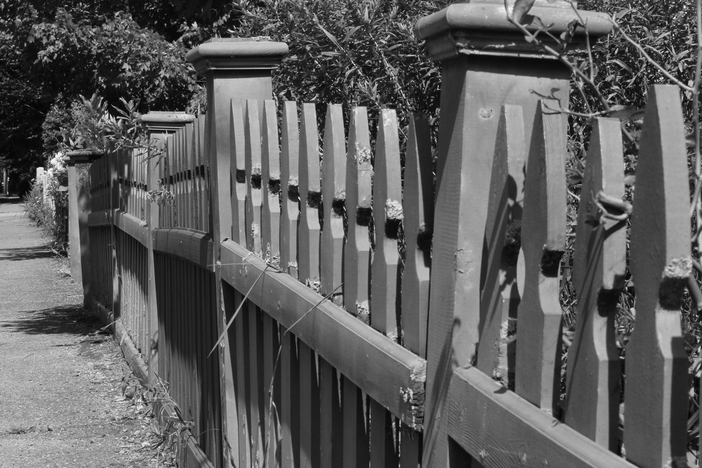 Fence by tdaug80