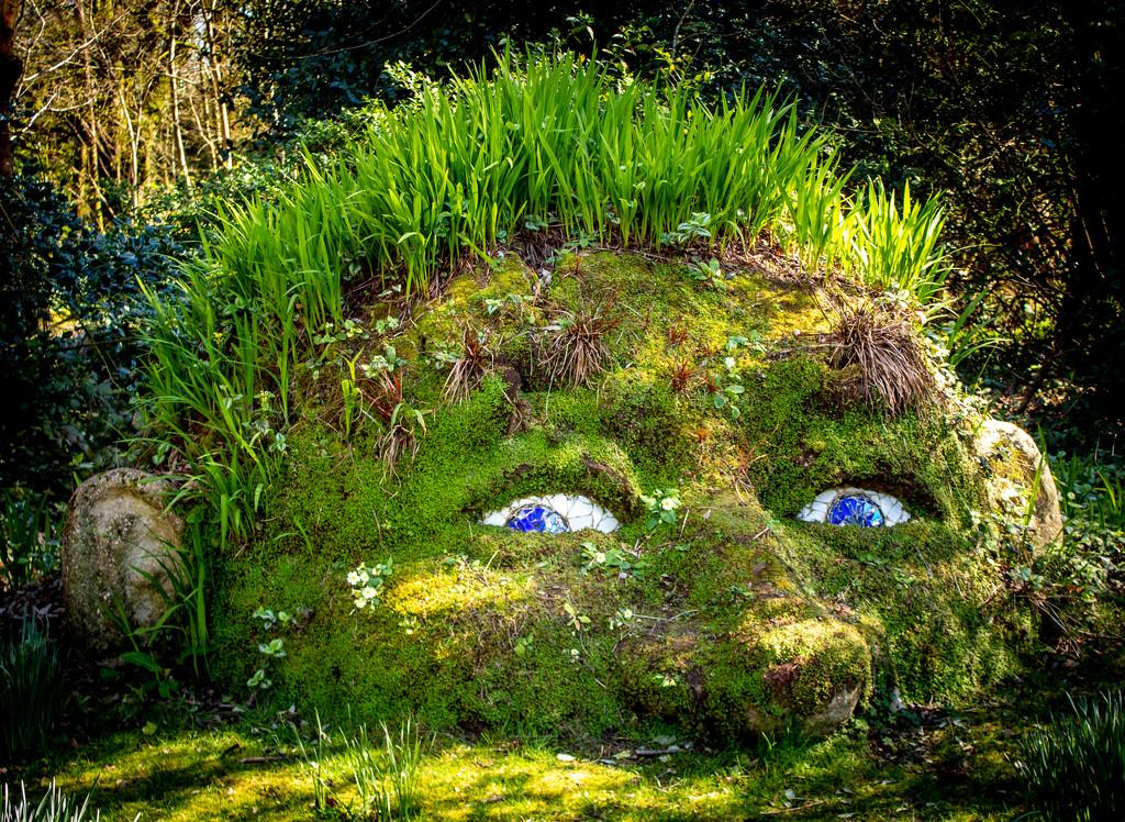 Green Giant by swillinbillyflynn