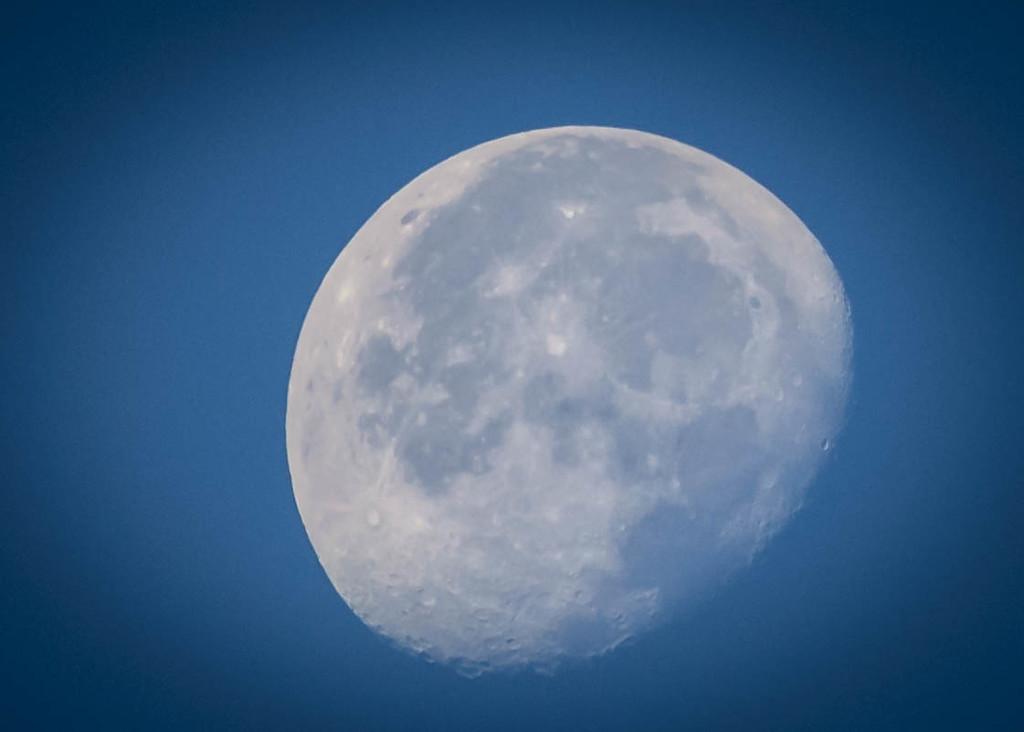 Evening Waning Gibbous Moon by marylandgirl58