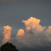 Sunset Cumulus Clouds