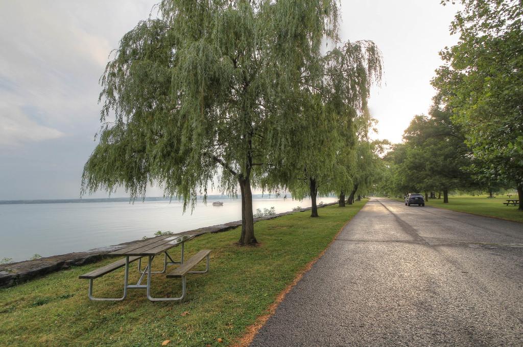 Next to Seneca Lake by mittens