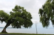 20th Aug 2019 - Seneca Lake