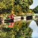 Golden hour at the canal by suesmith