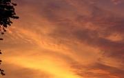 20th Aug 2019 - Sunset