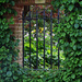 Secret Garden by judithdeacon