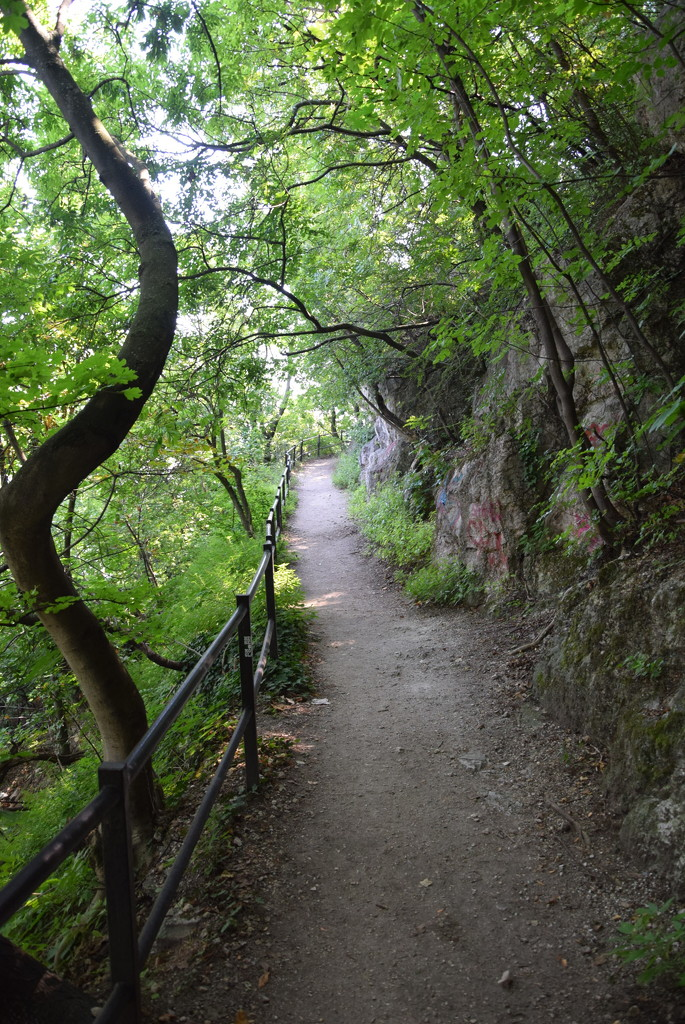 Gellert mountain walk by kork