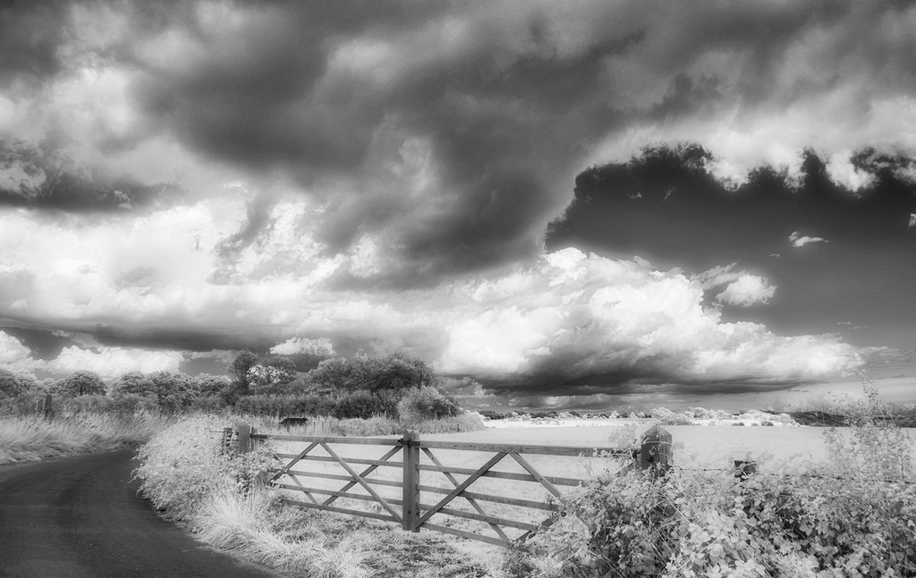 Back Road by fbailey