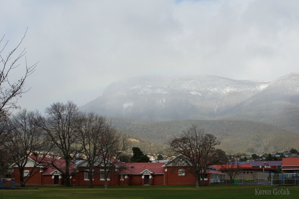 Snow on the Mountain  by kgolab