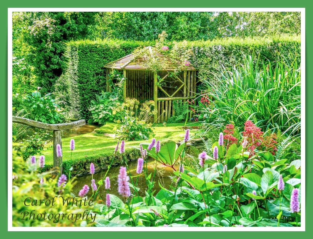 A Shady Corner,Coton Manor Gardens by carolmw