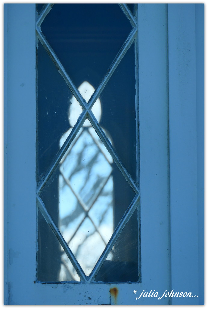 The Tree through the window- through the window... by julzmaioro