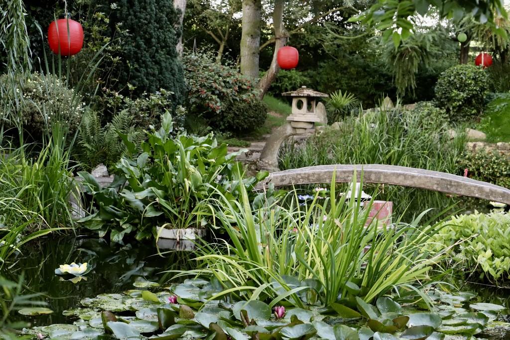 Japanese Garden by carole_sandford