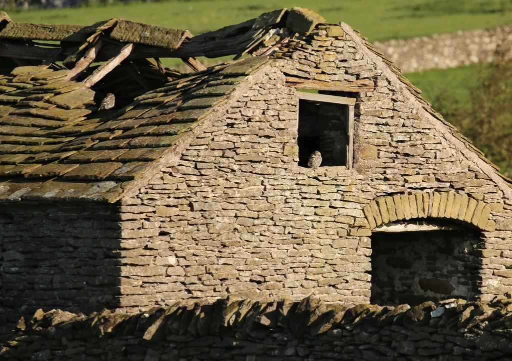 Take a closer look by shepherdmanswife