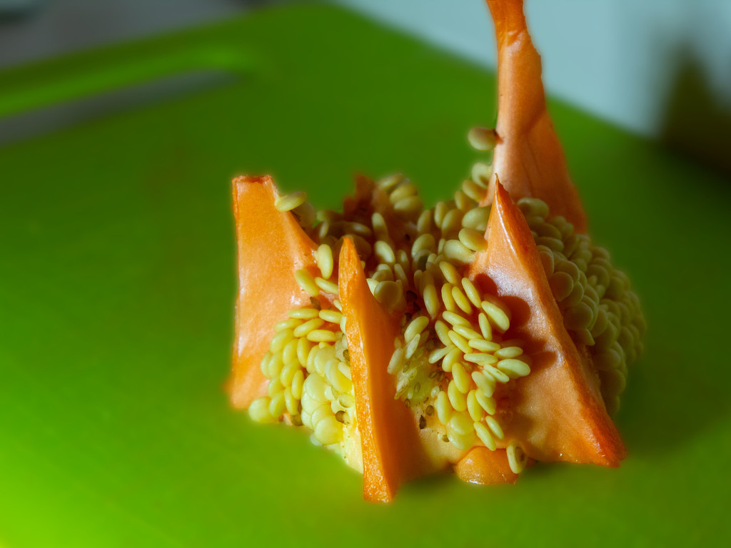 Alien Food by tdaug80