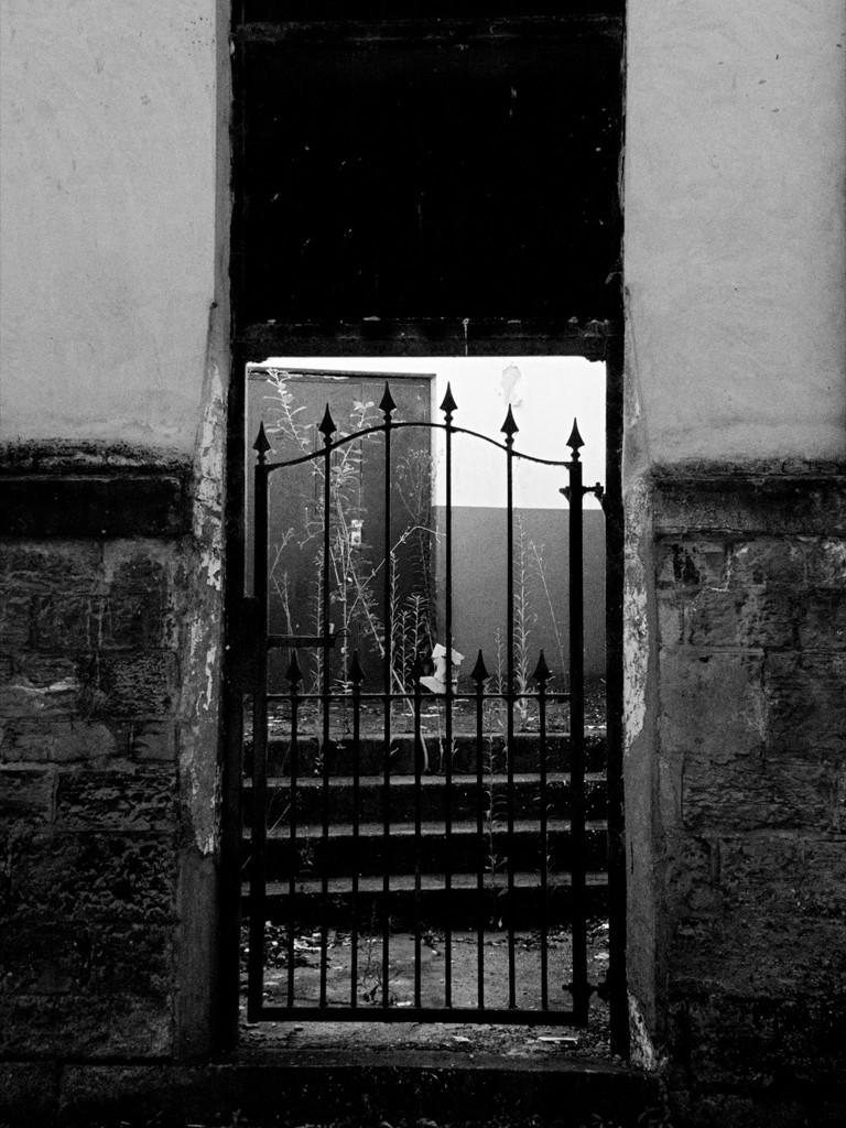 Gate, Steps, Door by allsop