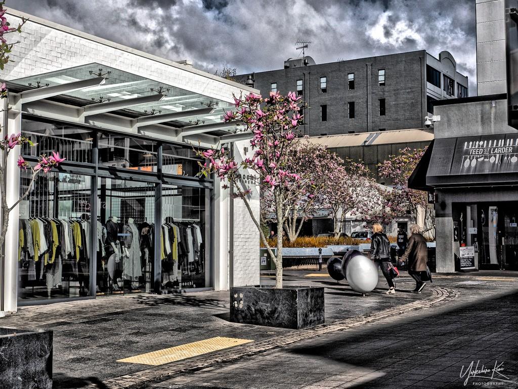 Shopping on Teed Street by yorkshirekiwi