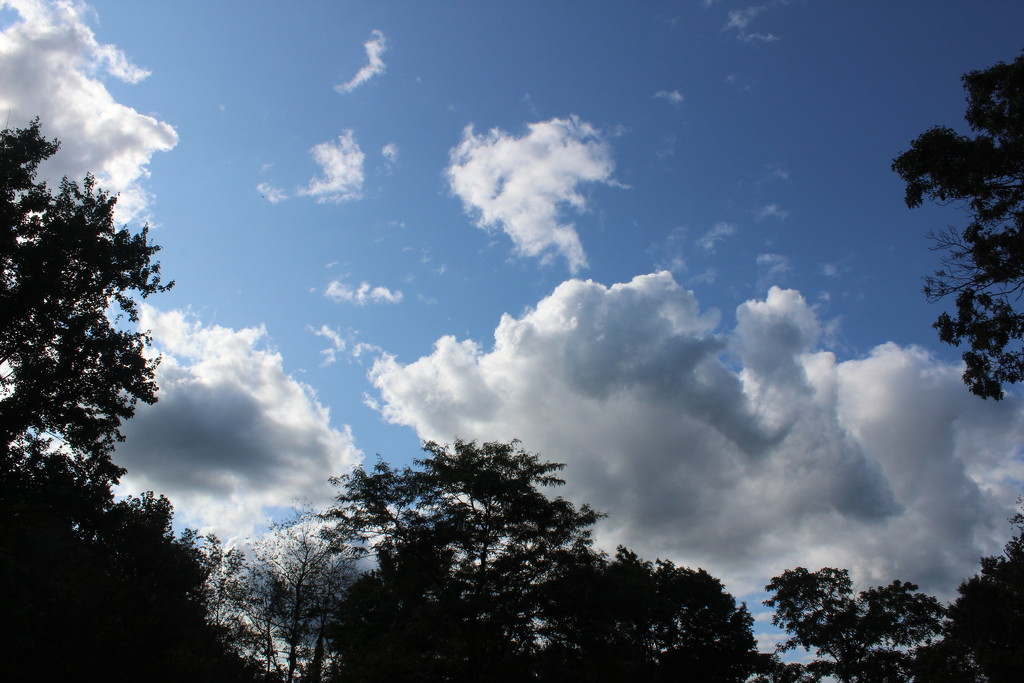 Clouds by tdaug80