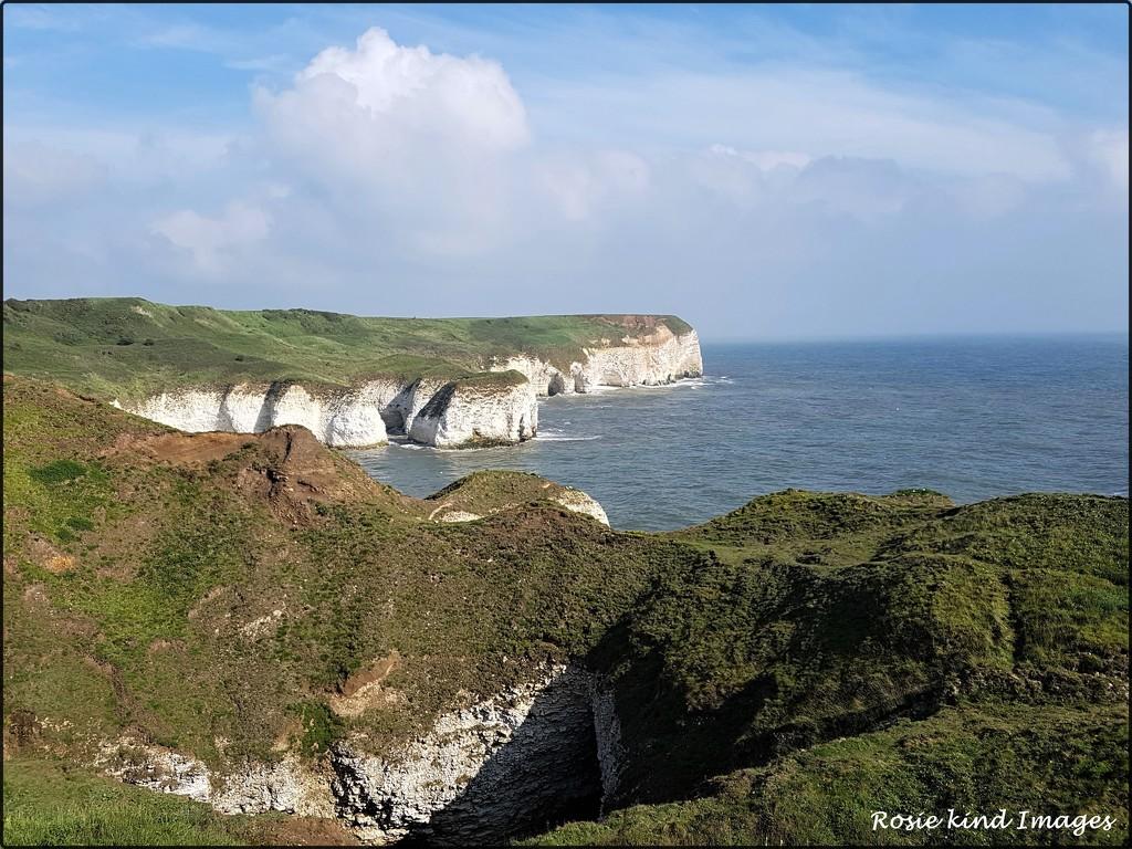 Bempton Cliffs by rosiekind