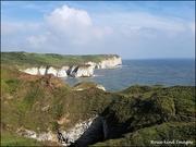25th Aug 2019 - Bempton Cliffs
