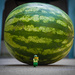 (Day 191) - Raiders of the Lost Watermelon by cjphoto
