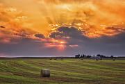 24th Aug 2019 - sunset