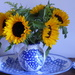 Birthday sunflowers by snowy