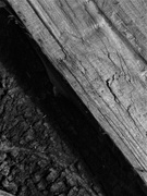 26th Aug 2019 - Firewood