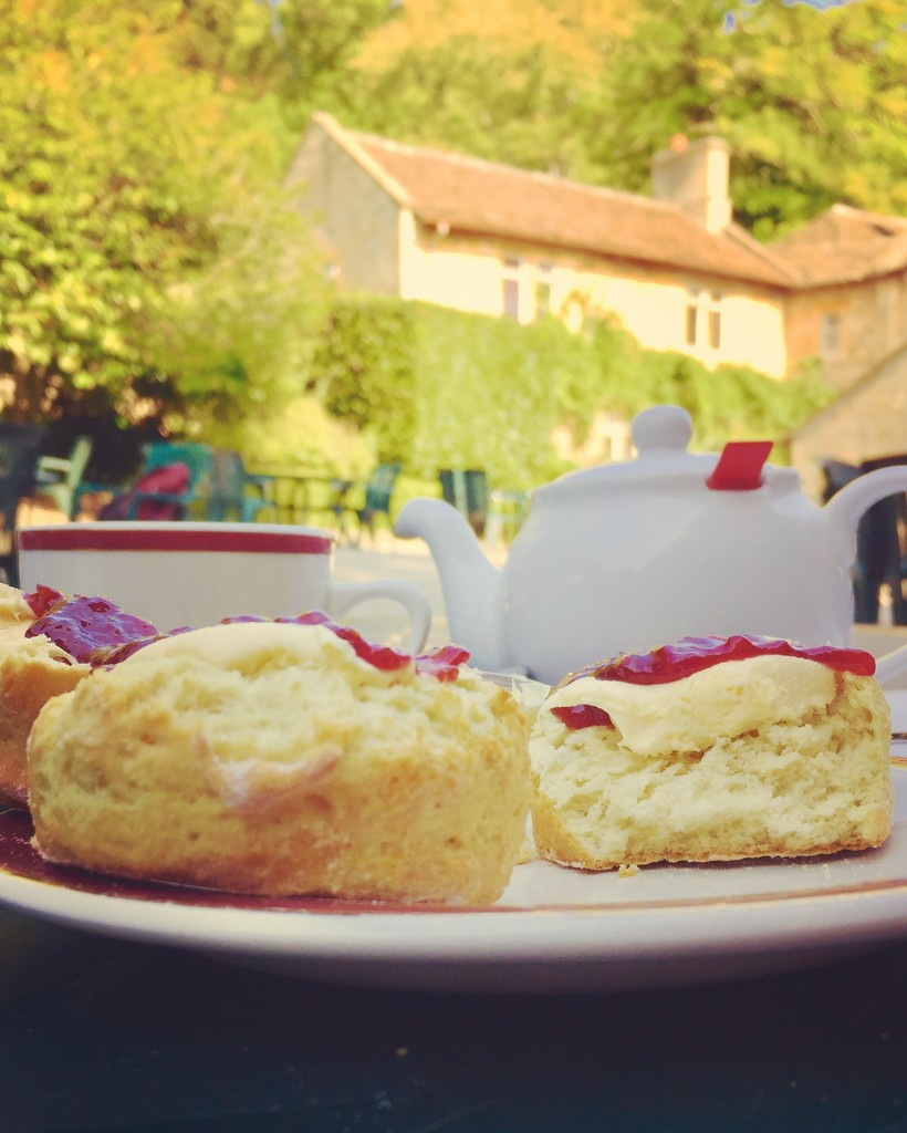Afternoon tea at Iford Manor by lilaclisa