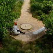 27th Aug 2019 - 214 - Le Jardin Secret (Marrakesh)