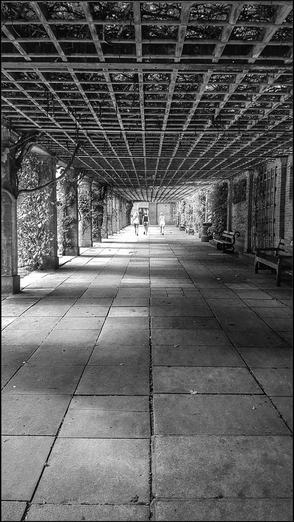 Valley Gardens, Harrogate by lyndamcg