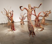 26th Aug 2019 - Seven Sisters Tree Women
