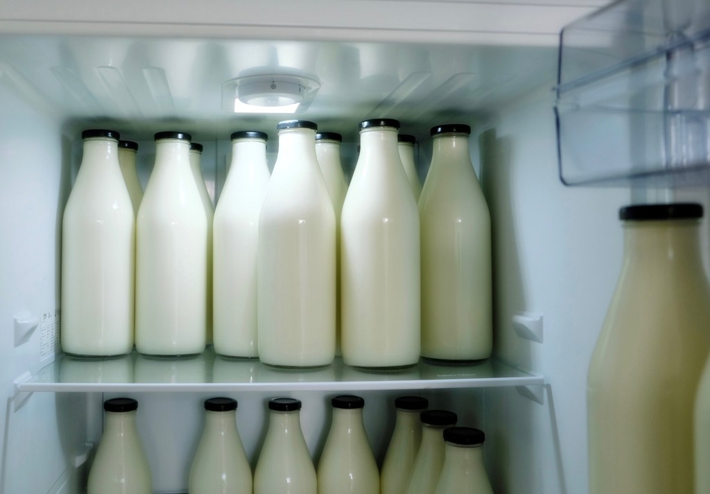 Dairy Line-up by maggiemae