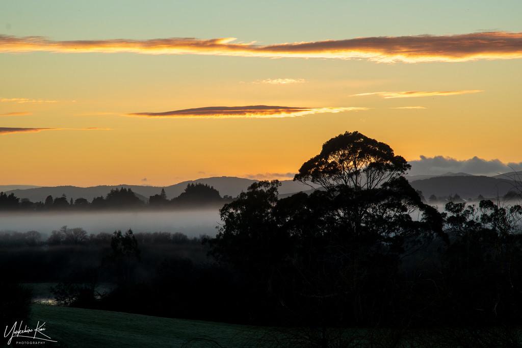 Morning Mist by yorkshirekiwi